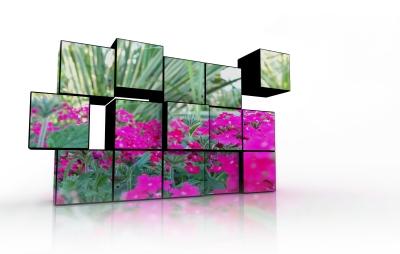 Trädgårdsdesign för en ätbar trädgård, Stockholm